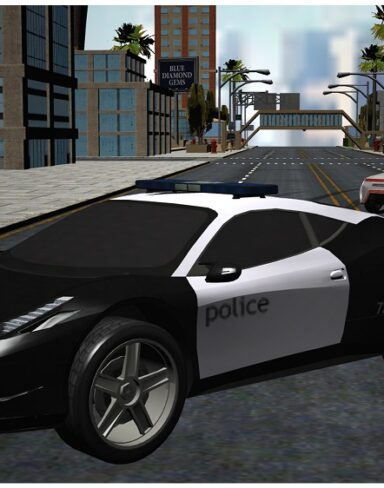 Police Chase Gangster Car race